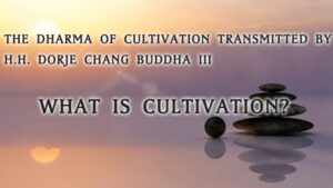 THE-DHARMA-OF-CULTIVATION-TRANSMITTED-BY-H.H.-DORJE-CHANG-BUDDHA-III
