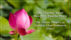 The-Dharma-Water-Manifests-Buddha-Power-The-Sincere-Prayers-to-Buddhas-Clear-Unknown-Illness
